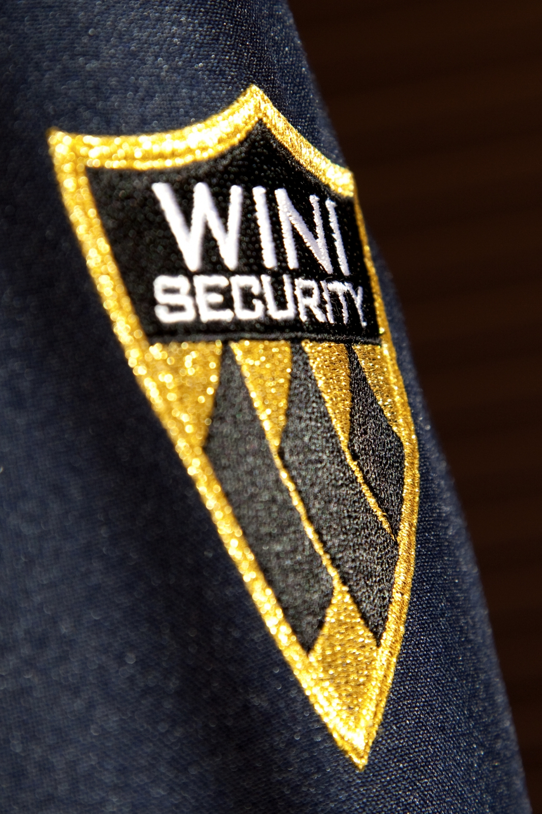 Wini Security 9