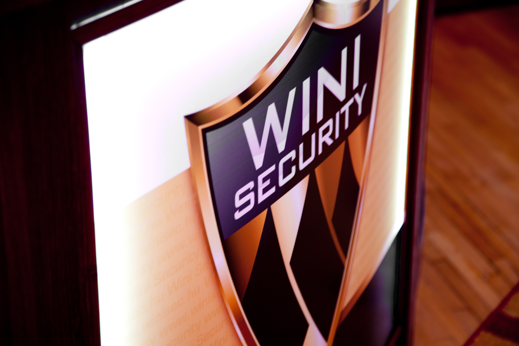 Wini Security 12